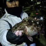 名護屋漁港でアラカブ釣り