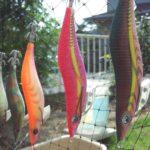 秋のアオリイカの釣り方は?